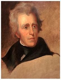 Image result for jacksonian democracy
