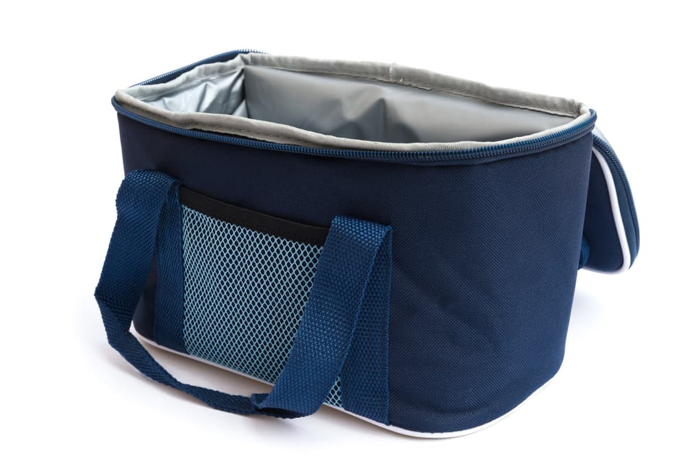 Best Lunch Bag For Adults