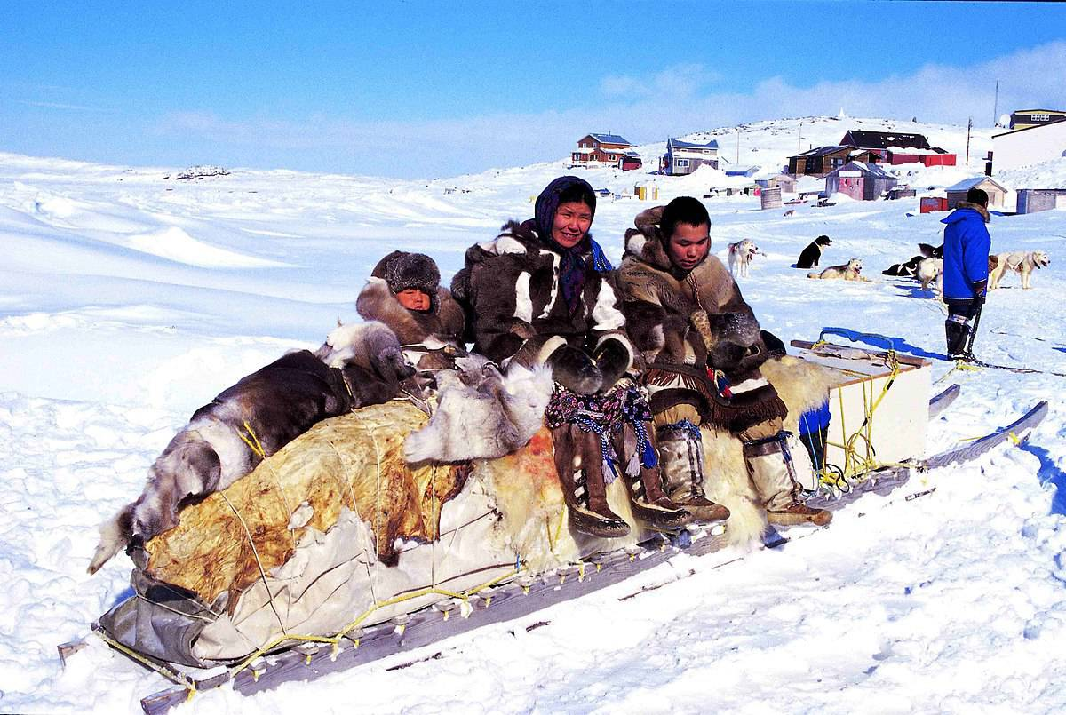 Intuit family on sled Main