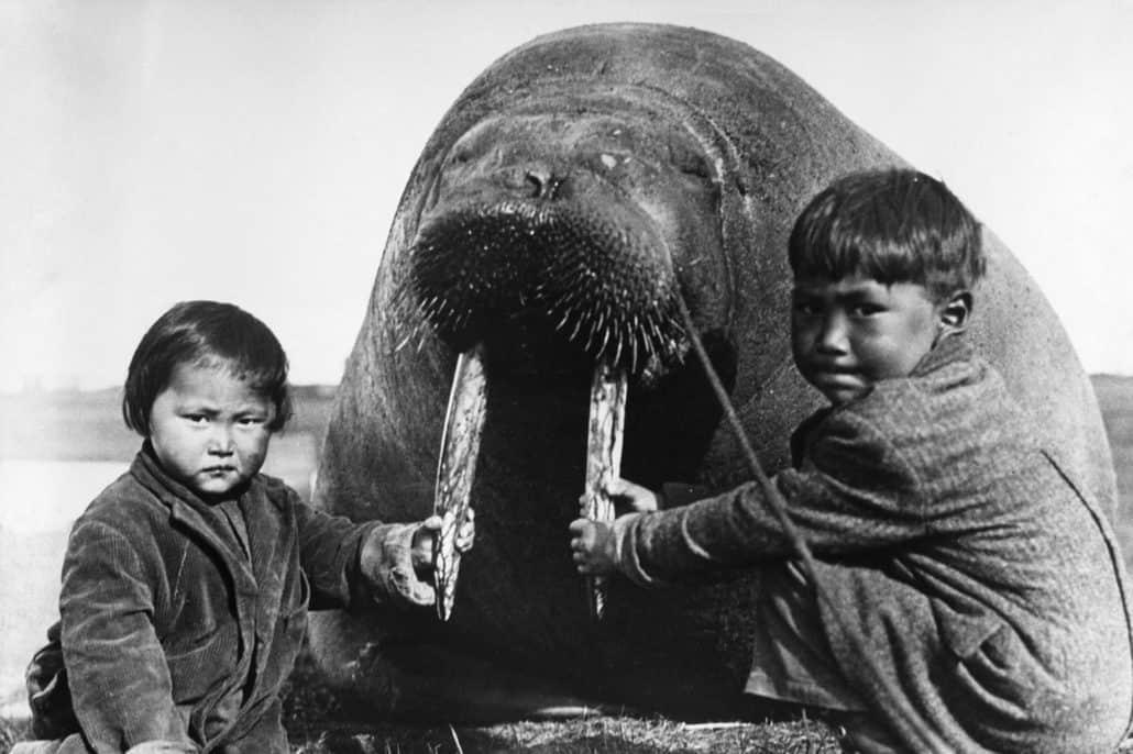 Intuit children with walrus